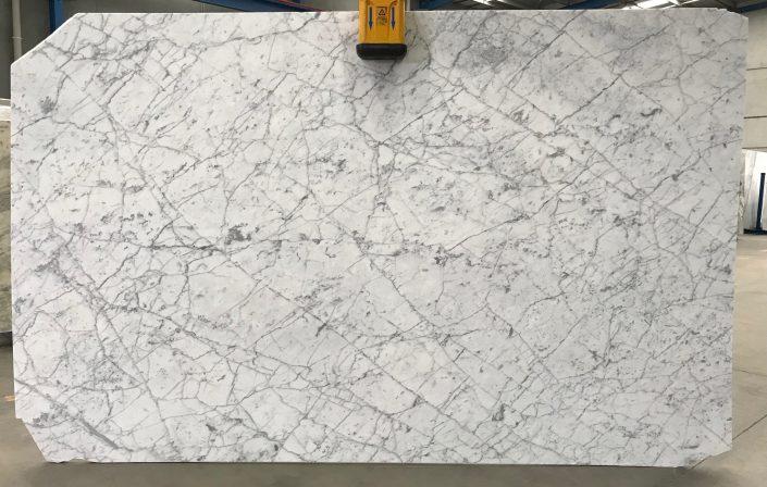 Carrara Venato #25273