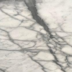 Grey Goose - close up