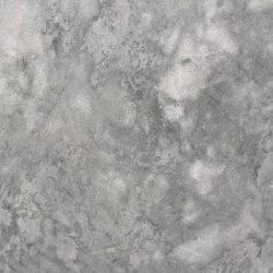 Super Grey - close up