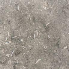 Sea Grass - close up